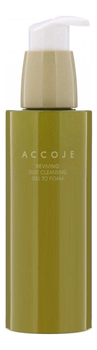 Купить Восстанавливающая гель-пенка для умывания Reviving Dust Cleansing Gel To Foam 180мл, ACCOJE