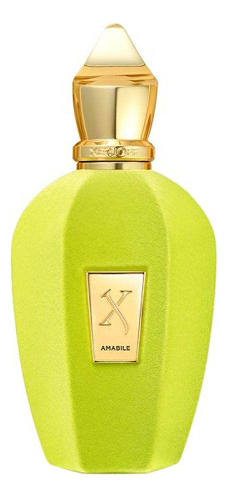 Купить Amabile: парфюмерная вода 50мл, Xerjoff