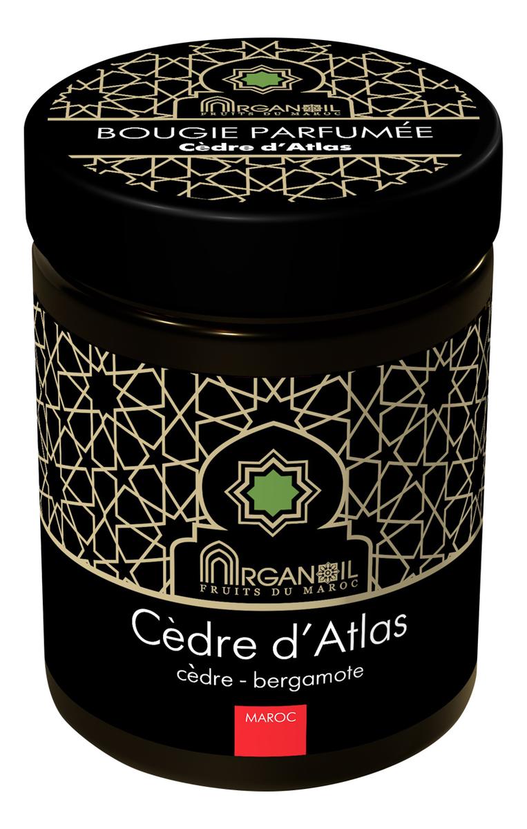 Фото - Ароматическая свеча Атласский кедр Bougie Parfumee Cedre D`atlas (кедр-бергамот): Свеча 160г ароматическая свеча кедр cedar свеча 380г