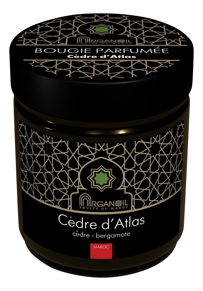 Фото - Ароматическая свеча Атласский кедр Bougie Parfumee Cedre D`atlas (кедр-бергамот): Свеча 55г ароматическая свеча кедр cedar свеча 380г