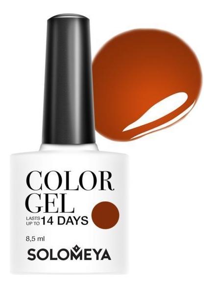 Купить Гель-лак для ногтей Color Gel 14 Days 8, 5мл: 117 Spicy Cinnamon, Solomeya