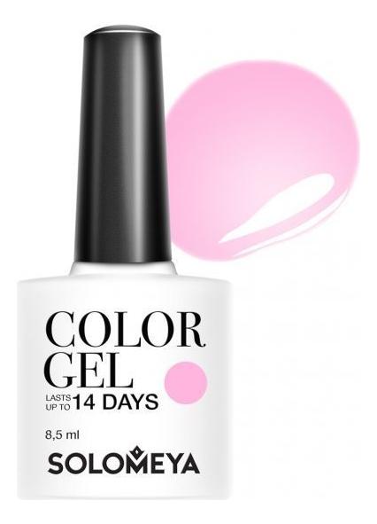 Купить Гель-лак для ногтей Color Gel 14 Days 8, 5мл: 99 Wet Stone, Solomeya