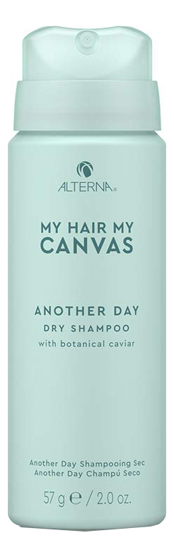 Сухой шампунь для волос My Hair My Canvas Another Day Vegan Dry Shampoo: Шампунь 57мл innisfree my hair moisturizing shampoo for dry hair
