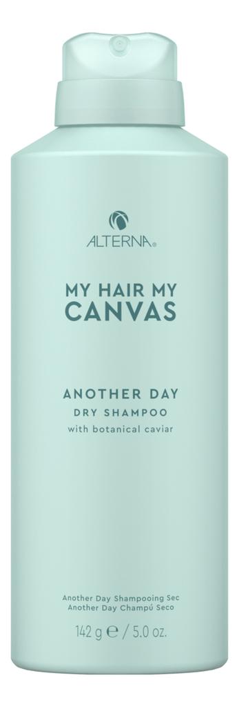 Сухой шампунь для волос My Hair My Canvas Another Day Vegan Dry Shampoo: Шампунь 142мл innisfree my hair moisturizing shampoo for dry hair