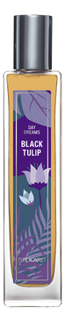 Day Dreams Black Tulip