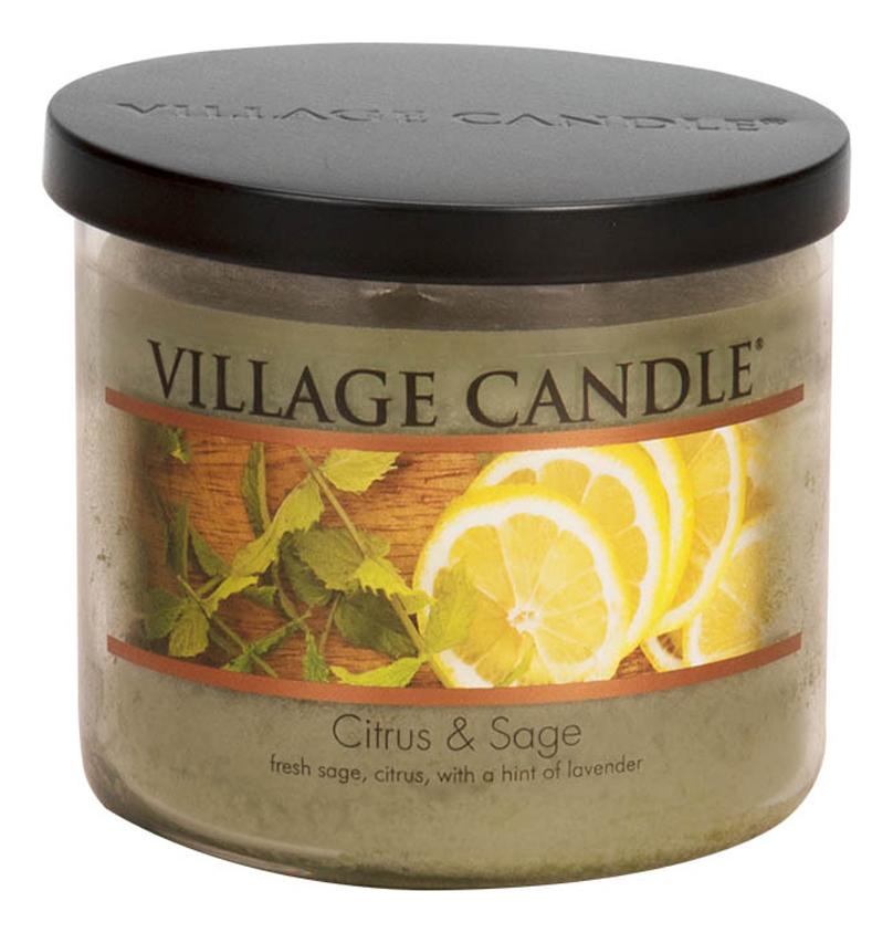 Купить Ароматическая свеча Citrus & Sage: свеча 396г, Ароматическая свеча Citrus & Sage, Village Candle