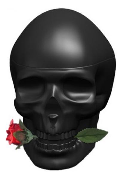 Christian Audigier Ed Hardy Skulls & Roses for Him: туалетная вода 100мл тестер christian audigier ed hardy villain for men туалетная вода 125мл