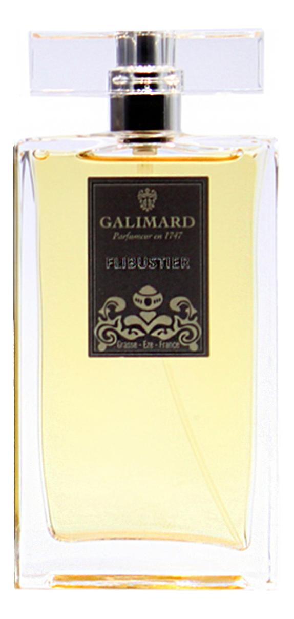 Купить Flibustier Men: парфюмерная вода 100мл, Galimard