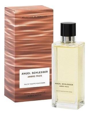 цена на Angel Schlesser Ambre Frais homme: туалетная вода 100мл