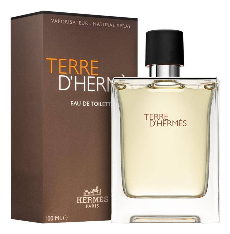 Купить Terre D'Hermes pour homme: туалетная вода 100мл