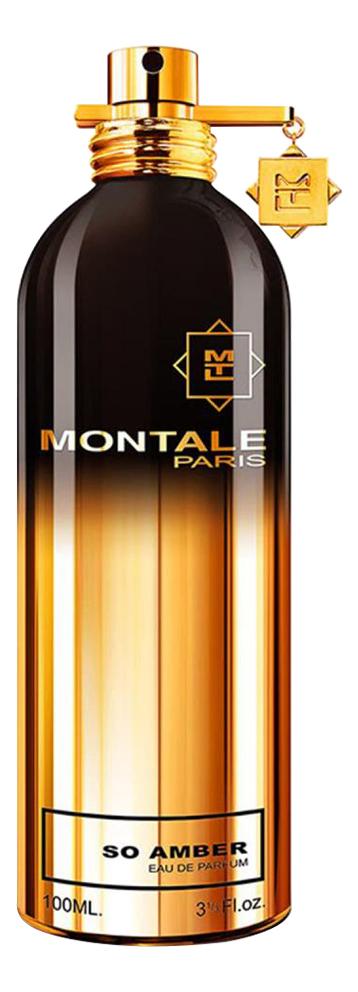 So Amber: парфюмерная вода 2мл, Montale  - Купить