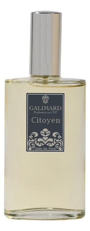 Купить Citoyen Men: туалетная вода 100мл, Galimard