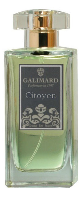 Купить Citoyen Men: духи 100мл, Galimard