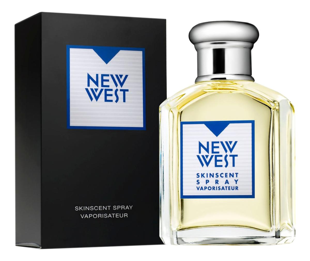 Aramis New West for men: туалетная вода 100мл