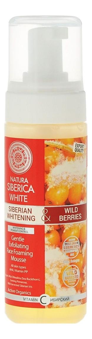 Нежный мусс для умывания White Gentle Exfoliating Face Foaming Mousse 150мл, Natura Siberica  - Купить