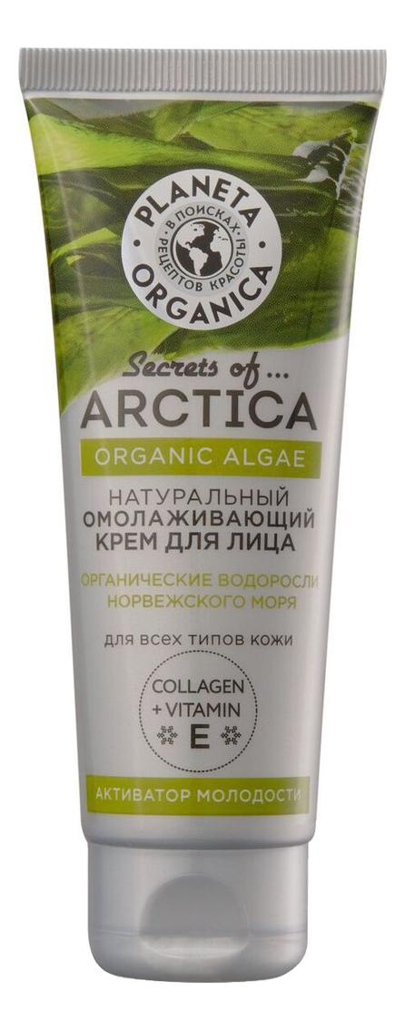 Крем для лица с водорослями Активатор молодости Secrets Of Arctica Organic Alga 75мл planeta organica secrets of arctica крем для лица активатор молодости омолаживающий 75 мл